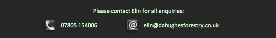 Contact_Elin1.png